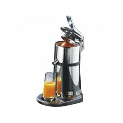 Juicer med spaken i rostfritt stål, en hastighet